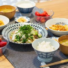 おうちごはん部/料理/献立/夕食 ある日の晩ごはん ・麻婆豆腐 ・白菜と舞…