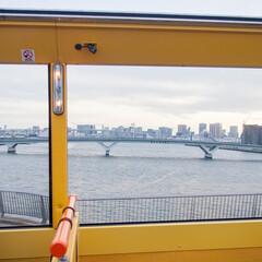 わたしのGW/はとバス/東京湾/景色/眺め 人生初のはとバスドライブ。 高速に乗って…(1枚目)