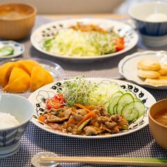 おうちごはん部/献立/料理/夕食 ある日の晩ごはんは豚肉と野菜のスタミナ炒…