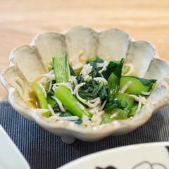 カネコ小兵製陶所 リンカ 12cmボウル(その他食器、カトラリー)を使ったクチコミ「ある日の副菜 小松菜としらすの煮浸し。軽…」