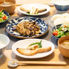 おうちごはん部/献立/料理/夕食/家庭料理 ある日の晩ごはん。 鮭の塩焼き長ネギ添え…