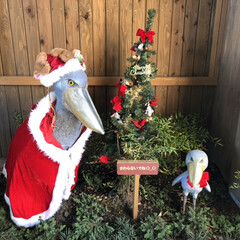 那須どうぶつ王国/動物園/栃木/フォロー大歓迎/クリスマス/おでかけ/... 「那須どうぶつ王国」の入り口にいました!…