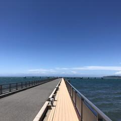 館山/千葉/海/令和元年フォト投稿キャンペーン/フォロー大歓迎/LIMIAおでかけ部/... 館山旅行の一枚。  天気は良かったのです…