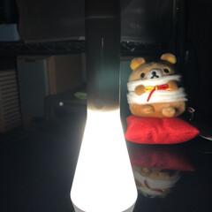 懐中電灯/照明器具/オシャレ/ルームライト/無印良品 前回の投稿が大変好評?だったので、続けて…(1枚目)