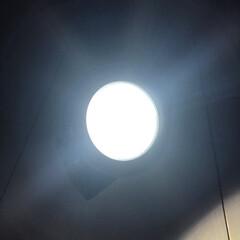 100均/照明器具/オシャレ/ルームライト/セリア 続いてのアイテムはこちら! これなーんだ…(3枚目)