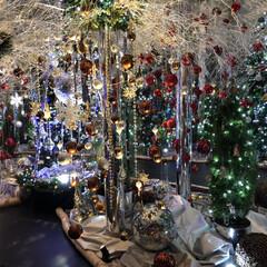 六本木/東京/グランドハイアット東京/ホテル/フォロー大歓迎/クリスマス/... 六本木にある「グランドハイアット東京」の…