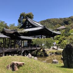 高台寺/京都/春のフォト投稿キャンペーン/フォロー大歓迎/おでかけ/旅行/... 京都旅行〜  高台寺を初観光!なかなか見…