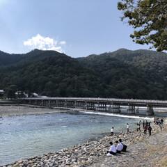 青春/渡月橋/京都/旅行/フォロー大歓迎/秋/... 日本で一番好きな景色「渡月橋」! 京都に…
