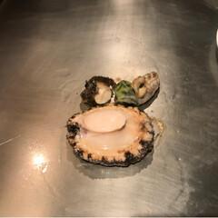 コース料理/鉄板焼き/グルメ 旬に行ってきました🙆♀️ コース料理に…(3枚目)