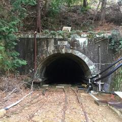 歴史探検/あけおめ/フォロー大歓迎/冬/おでかけ/旅行/... 昔、このトンネルは、トロッコが、走ってた…