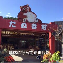 たぬき村/スカーレットロケ地/次のコンテストはコレだ!/おでかけ/フォロー大歓迎/はじめてフォト投稿 たぬき村大鳥居がお迎え! NHKの連続T…