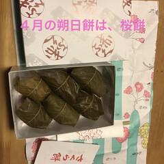 桜餅/伊勢千代紙/赤福の朔日餅 昨日、仲良くしているおばちゃんから桜餅を…(2枚目)