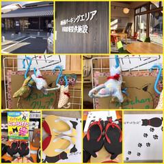 ニャンコ同好会/【PR】LIMIAcamp/雑貨/ハンドメイド/おでかけ/暮らし/... 新しく出来た阪和道路を初めて走りました。…