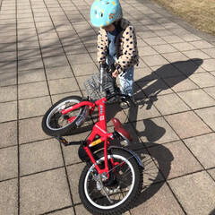 次男/公園/自転車練習/子どもと暮らす いつ乗れるようになるかなー♬ ガッツはあ…