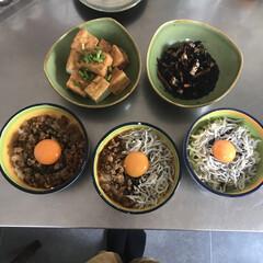 丼物/簡単レシピ/休校中/お昼ごはん/暮らし 今日のお昼は丼🍚 私はしらす丼 魚が苦手…