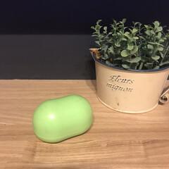 シード 消しカスクリーナー まめコロ SMG-MC-1-G グリーン(消しゴム)を使ったクチコミ「このコロンとしたかわいいもの何か分かりま…」