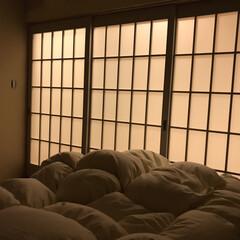 引き戸/ドア/寝室/インテリア/住まい/リフォーム 寝室のドア ちょっと高さが低めで(180…
