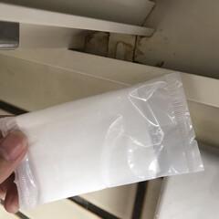 紙おしぼり 185×220mm(弁当箱)を使ったクチコミ「換気扇掃除レポ。 すみっこの細かい隙間も…」