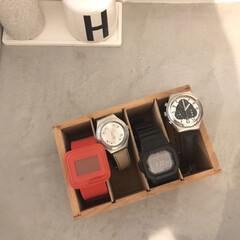ソイル トゥースブラシスタンド | ソイル(日用品)(歯ブラシ立て)を使ったクチコミ「腕時計収納⌚️ 私は腕時計をあまりしない…」