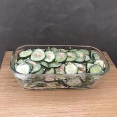 iwaki 耐熱ガラス 保存容器 システムセットパック&レンジ グリーン PSC-PRN-G7(その他キッチン、台所用品)を使ったクチコミ「きゅうり消費メニュー🥒 ポイントは塩揉み…」