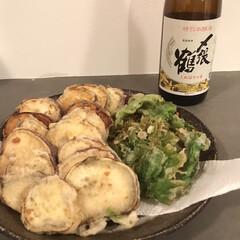 天ぷら/夜ごはん/おうち時間 今日の夜ごはんは ふきのとうの天ぷらにし…