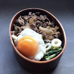 食洗機対応 曲げわっぱ弁当箱 L S15-5-8s|b03(弁当箱)を使ったクチコミ「冷凍卵って知ってますか!? 生卵を1日く…」