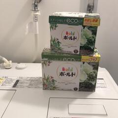 ボールド プラチナクリーン粉末 ピュアクリーンボタニアの香り | ボールド(液体洗剤)を使ったクチコミ「最近お気に入りの洗剤。  いい匂いつけま…」