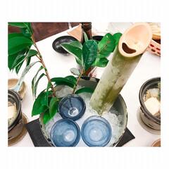 旅の思い出/日本酒/4世代旅行/温泉/旅行/旅 キンキンに凍らせた青竹に入った日本酒🍶 …