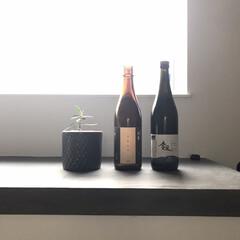 キッチン/住まい/リフォーム/暮らし 最近、日本酒が好きになりまして♡ 左の「…