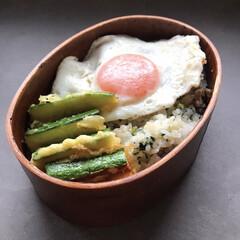 食洗機対応 曲げわっぱ弁当箱 L S15-5-8s|b03(弁当箱)を使ったクチコミ「卵の存在感がすごい今日の旦那弁当🍳 ズッ…」