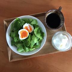イッタラ プレート ティーマ ホワイト Teema 17cm | イッタラ(皿)を使ったクチコミ「今日の朝ごはん🍽 新婚旅行でイタリアに行…」