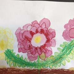 おでかけワンショット/絵画/子どもの作品/こどもと暮らす/お絵かき 5歳の次男が遠足のあとに描いたバラの絵 …