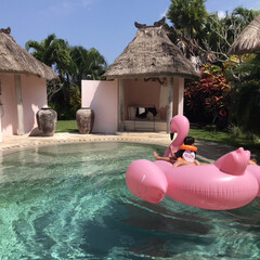 trip/旅の思い出/バリ/海外旅行/風景/旅行/... バリ旅行pic ヴィラの貸切プールです …