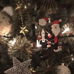 オーナメント/インテリア/クリスマス/クリスマスツリー/クリスマス2019 サンタさん 今年も子どもたちに夢をありが…