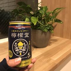 檸檬堂/晩酌/コカコーラ/チューハイ/暮らし/フォロー大歓迎 次はこっち♡ コカコーラ初のアルコール …