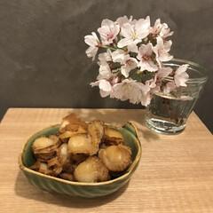 お花見/酒のアテ/ごはんのお供/簡単副菜/キッチン/暮らし 今日も桜と一緒に📷 おうちでプーーーーー…