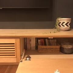 観葉植物 フェイクグリーン ボタンリーフバイン〔×12本入り〕アレンジメント/インテリア(人工観葉、フェイクグリーン)を使ったクチコミ「テレビボードの向かって左はDVDグッズで…」