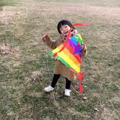 思い出/冬/おでかけ/100均/ダイソー/ファッション 正月と言えば「凧揚げ」❤️こちらの凧はダ…