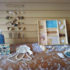 夏/貝殻/海/DIY/雑貨/100均/... 7月の月カレンダー作りました‼️❇️ グ…