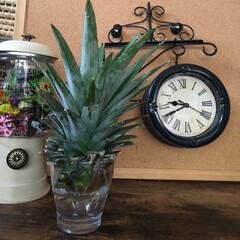 両面時計/ワッツ/セリア/DIY/100均/ダイソー/... 大人の夏休み工作みたいな両面時計作ってみ…