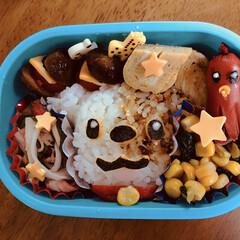 キャラ弁 息子の昼御飯に簡単なワンちゃんのキャラ弁…