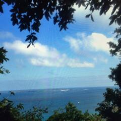 「沖縄、斎場御嶽から久高島が見えます。 今…」(1枚目)
