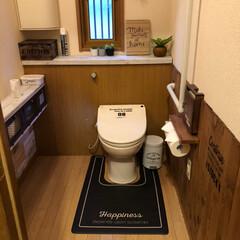 トイレDIY/100均/ダイソー/セリア/トイレ/インテリア/... トイレ🚽DIY❣️  1階のトイレ🚽なん…