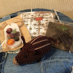 ありがとう/感謝/リミ友❣️/プレゼント/素敵&嬉し便 素敵&嬉し便🎁❣️  いのしし🐗くん❣️…