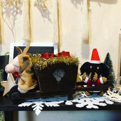 手作り隊/マクラメツリー/ちゃー坊/ありがとうございます❣️/素敵便/クリスマスディスプレイ/... 我が家にも一輪車が届きました😊 相変わら…