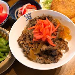 牛丼/散歩/カニ釣り/海/おうちごはん 今日は牛丼にしました❣️ 紅生姜・一味!…