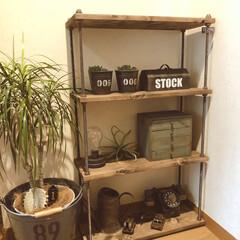 小引き出し/ボルトラック/インダストリアル/男前インテリア/アンティーク雑貨/DIY女子/... セリアの木材と収納BOXで、引出しDIY…