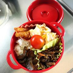 野菜/お弁当/おうちごはん おはようございます☀ 台風が過ぎ去った後…