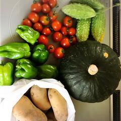 野菜/お弁当/おうちごはん おはようございます☀ 台風が過ぎ去った後…(2枚目)