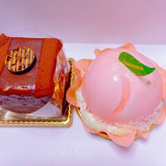 チワワ/空🐶/お昼は鶏丼🐓/ガトーショコラ/桃のケーキ🍑/シャトレーゼ/... 今日はお買い物ついでにシャトレーゼへ🚗💨…